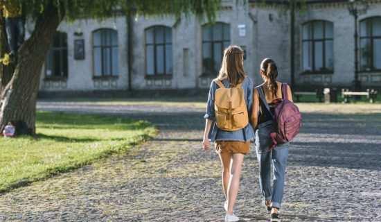 Año academico en Alemania